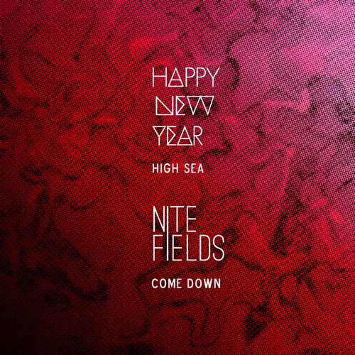 Happy New Year / Nite Fields Split.