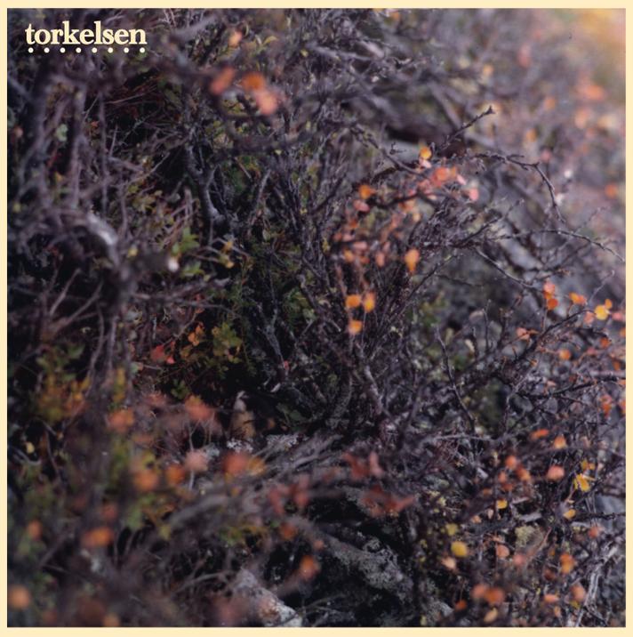 "Premiere: Torkelsen – ""Markjordbær""."